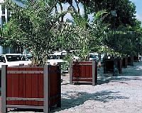 Palmenkästen SARLAT