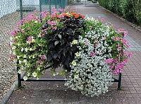 Blumeneinrichtung an Stadtgeländern