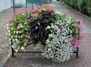 Blumeneinrichtung an Stadtgeländern - Montagebeispiel