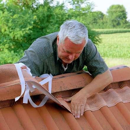 garten hochbau dach werkstatt wohnen das. Black Bedroom Furniture Sets. Home Design Ideas